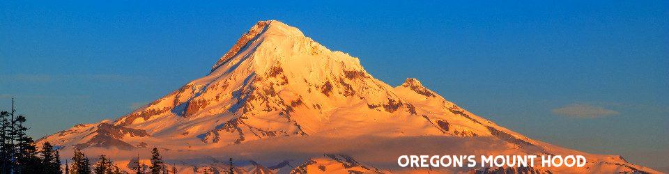 Oregon Faith and Freedom